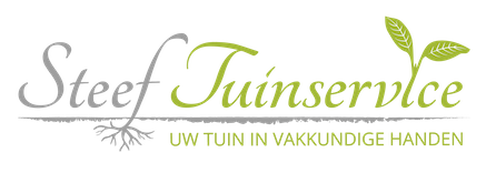 Steef Tuinservice: hovenier en tuinman in Alblasserdam en omstreken